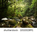 rocky stream in new zealand | Shutterstock . vector #101032891