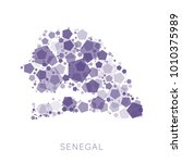 map of senegal filled with...   Shutterstock .eps vector #1010375989
