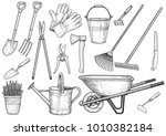 garden accessories illustration ... | Shutterstock .eps vector #1010382184