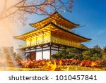 stunning fall foliage at... | Shutterstock . vector #1010457841