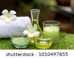 thai spa massage compress balls ... | Shutterstock . vector #1010497855