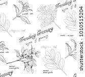 trending greenery illustrations ... | Shutterstock . vector #1010515204