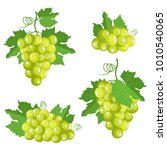 Collection Of Isolated Grape....