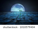 plant in the moonlight | Shutterstock . vector #1010579404