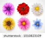 Spring Flowers Colorful Vector...