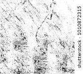 grunge black and white pattern. ... | Shutterstock . vector #1010872315