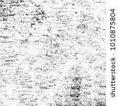 grunge black and white pattern. ... | Shutterstock . vector #1010875804