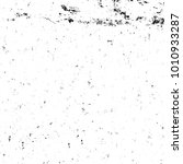 grunge black and white pattern. ... | Shutterstock . vector #1010933287