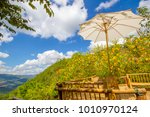 maxican sunflowers in mae hong... | Shutterstock . vector #1010970124