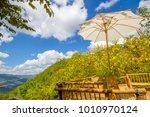 maxican sunflowers in mae hong... | Shutterstock . vector #1010970124