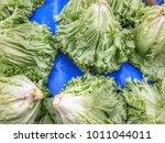 lettuce in market   Shutterstock . vector #1011044011
