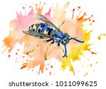 watercolor wasp on colorful...   Shutterstock . vector #1011099625