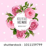 beautiful vector floral... | Shutterstock .eps vector #1011159799