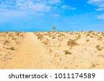 view of desert in boa vista ...   Shutterstock . vector #1011174589