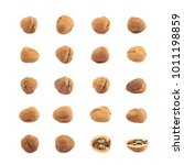 single walnut isolated over the ... | Shutterstock . vector #1011198859