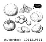 mozzarella cheese vector... | Shutterstock .eps vector #1011219511