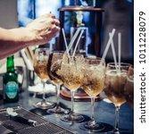 professional bartender making... | Shutterstock . vector #1011228079