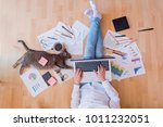 working space with a cat... | Shutterstock . vector #1011232051