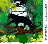 vector black panther leopard... | Shutterstock .eps vector #1011282205
