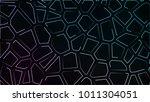 abstract neon background pink... | Shutterstock . vector #1011304051