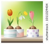hello spring background with... | Shutterstock .eps vector #1011329404