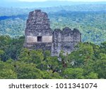 tikal  ancient mayan citadel in ... | Shutterstock . vector #1011341074