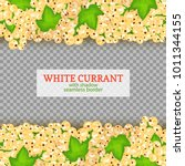 white currant fruit horizontal... | Shutterstock .eps vector #1011344155