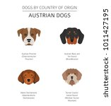 dogs by country of origin.... | Shutterstock .eps vector #1011427195
