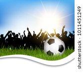 football   soccer ball in grass ... | Shutterstock .eps vector #1011451249