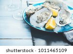 fresh oysters close up on blue...   Shutterstock . vector #1011465109