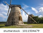 betty's hope is no longer... | Shutterstock . vector #1011504679
