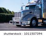 hip powerful gray glossy... | Shutterstock . vector #1011507394