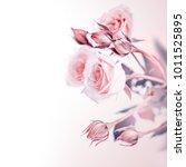 beautiful gentle pink roses... | Shutterstock . vector #1011525895