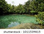 emerald pool krabi thailand.... | Shutterstock . vector #1011539815