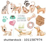 Watercolor Cute Funny Dogs And...