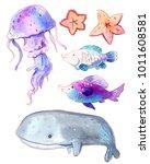 watercolor set of sea creatures.... | Shutterstock . vector #1011608581