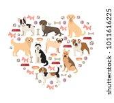 dog lovers flat style... | Shutterstock .eps vector #1011616225