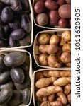 Small photo of Variety of raw uncooked organic potatoes different kind and colors red, yellow, purple in market baskets. Food background. Top view, close up