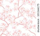 cherry blossom vector... | Shutterstock .eps vector #101166175