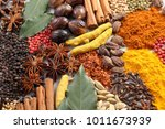 herbs and spices selection.... | Shutterstock . vector #1011673939