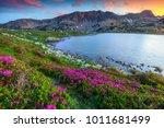 amazing sunset landscape ...   Shutterstock . vector #1011681499