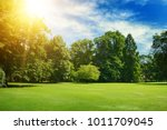 bright summer sun illuminates... | Shutterstock . vector #1011709045