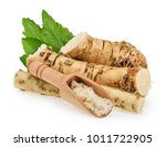 horseradish roots isolated on... | Shutterstock . vector #1011722905