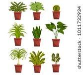 pots of green deciduous plants... | Shutterstock .eps vector #1011732934