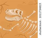 fossilized dinosaur skeleton... | Shutterstock .eps vector #1011734815