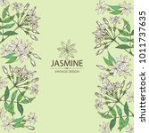 background with jasmine  flower ... | Shutterstock .eps vector #1011737635