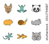 pets color icons set. german... | Shutterstock .eps vector #1011754087
