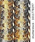 snake skin texture.  texture... | Shutterstock .eps vector #1011778297