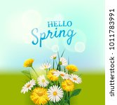 hello spring  a bouquet of... | Shutterstock .eps vector #1011783991