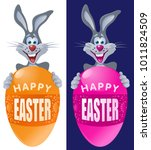 happy easter. funny rabbit with ... | Shutterstock .eps vector #1011824509